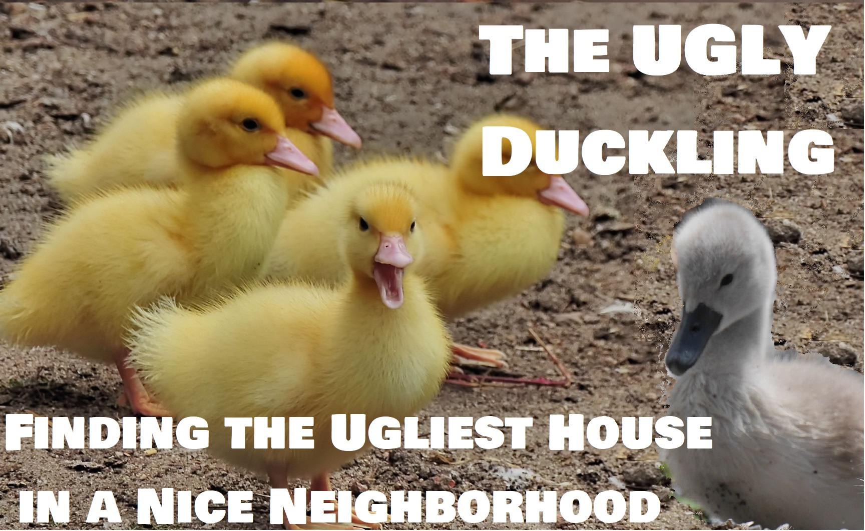 The Ugly Duckling: Finding the Ugliest House in a Nice Neighborhood